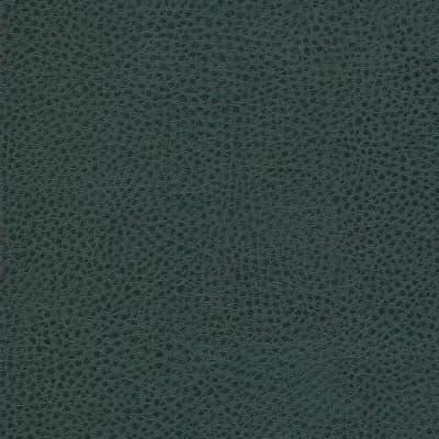 sontex-green