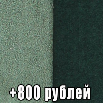 Астра салатово-зеленая (+800 рублей)